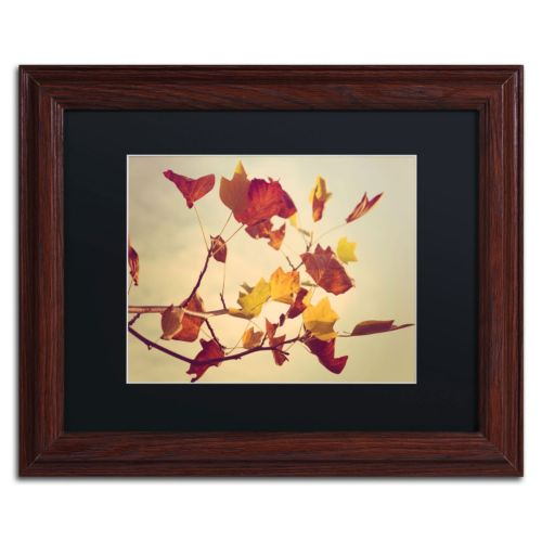Trademark Fine Art ''Still Fall'' Matted Wooden Wall Framed Art by Philippe Sainte-Laudy