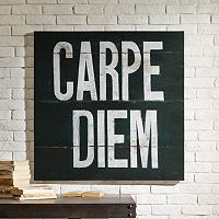 INK+IVY Gel Coat Carpe Diem Canvas Wall Art
