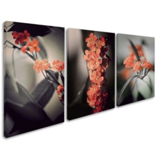 Trademark Fine Art ''Soft Gray'' Canvas Wall Art 3-piece Set