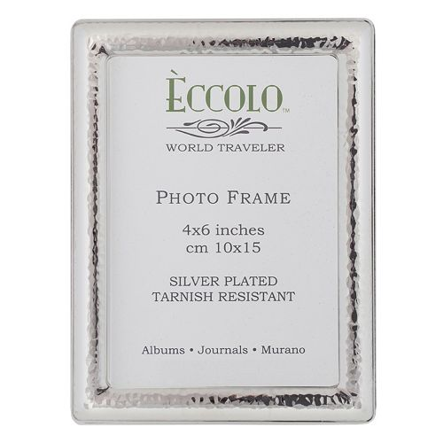World Traveler Silverplate Narrow Hammered Frame
