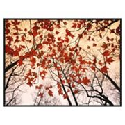 Art.com ''Red Maple and Autumn Sky'' Framed Wall Art