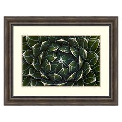 'Queen Victoria's Agave, Saguaro National Park'' Framed Wall Art