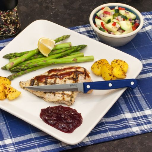 Ginsu Essential Series 4-pc. Steak Knife Set