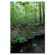 ''Tiny Forest Falls'' Canvas Wall Art