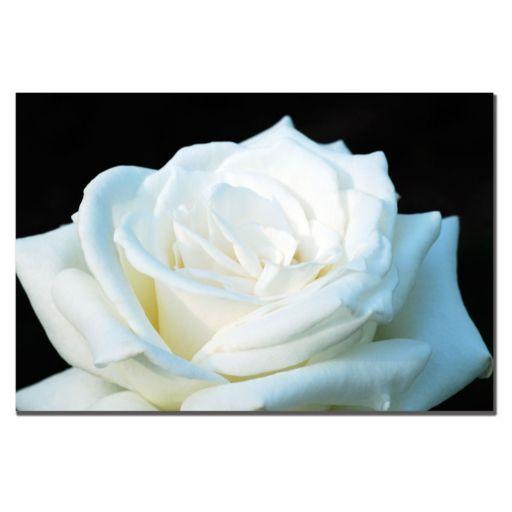 ''White Rose II'' Canvas Wall Art