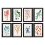 Colorful Algae Wall Art 8-piece Set