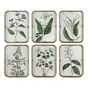 Floral Collection Framed Wall Art 6 pc Set