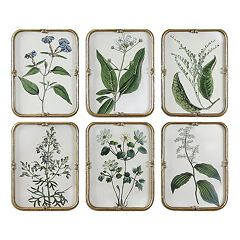 Uttermost Floral Collection Framed Wall Art 6-piece Set
