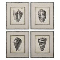 Vintage Diderot Seashell Wall Art 4 pc Set