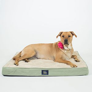 Serta Ortho Foam Quilted Pillowtop Pet Bed
