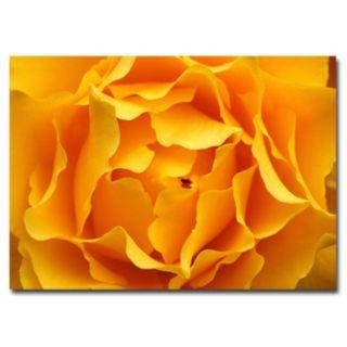 ''Hypnotic Yellow Rose'' Canvas Wall Art