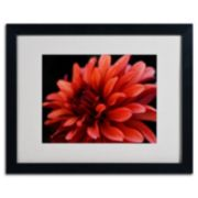 ''Red Dahlia'' Framed Wall Art