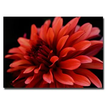 ''Red Dahlia'' Canvas Wall Art