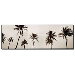 ''Black & White Palms'' Canvas Wall Art
