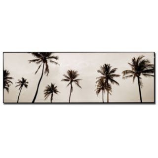 ''Black & White Palms'' Canvas Wall Art