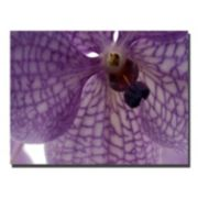 ''Orchid Veins'' Canvas Wall Art