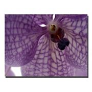''Orchid Veins'' Canvas Wall Art