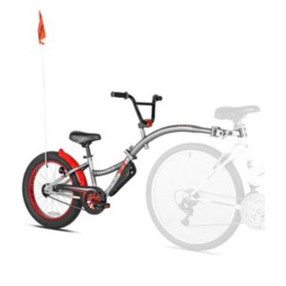 Kids WeeRide Co-Pilot XT Fat Tire Bike