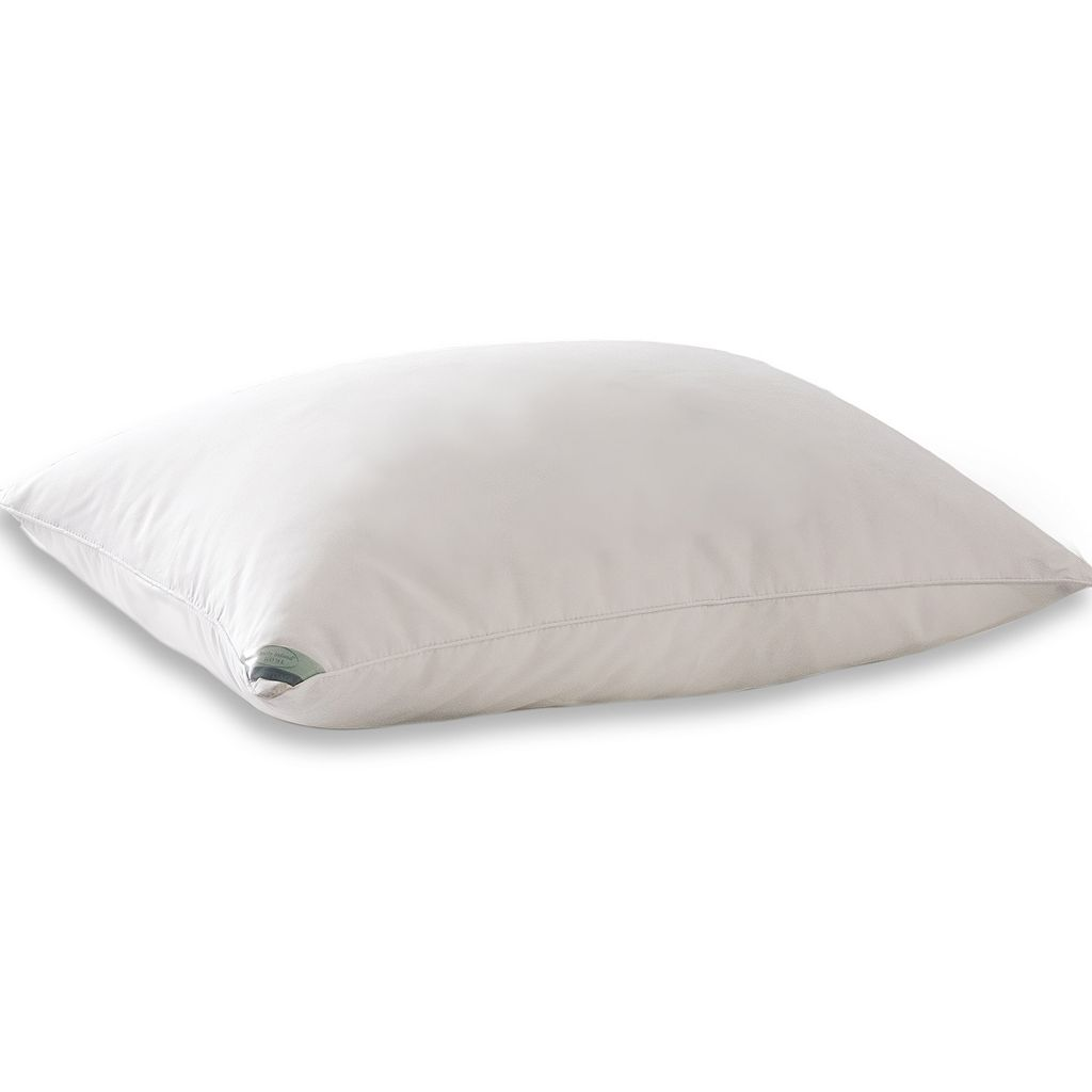 Kathy Ireland Down Pillow