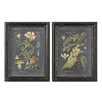 Midnight Botanicals Wall Art 2-piece Set