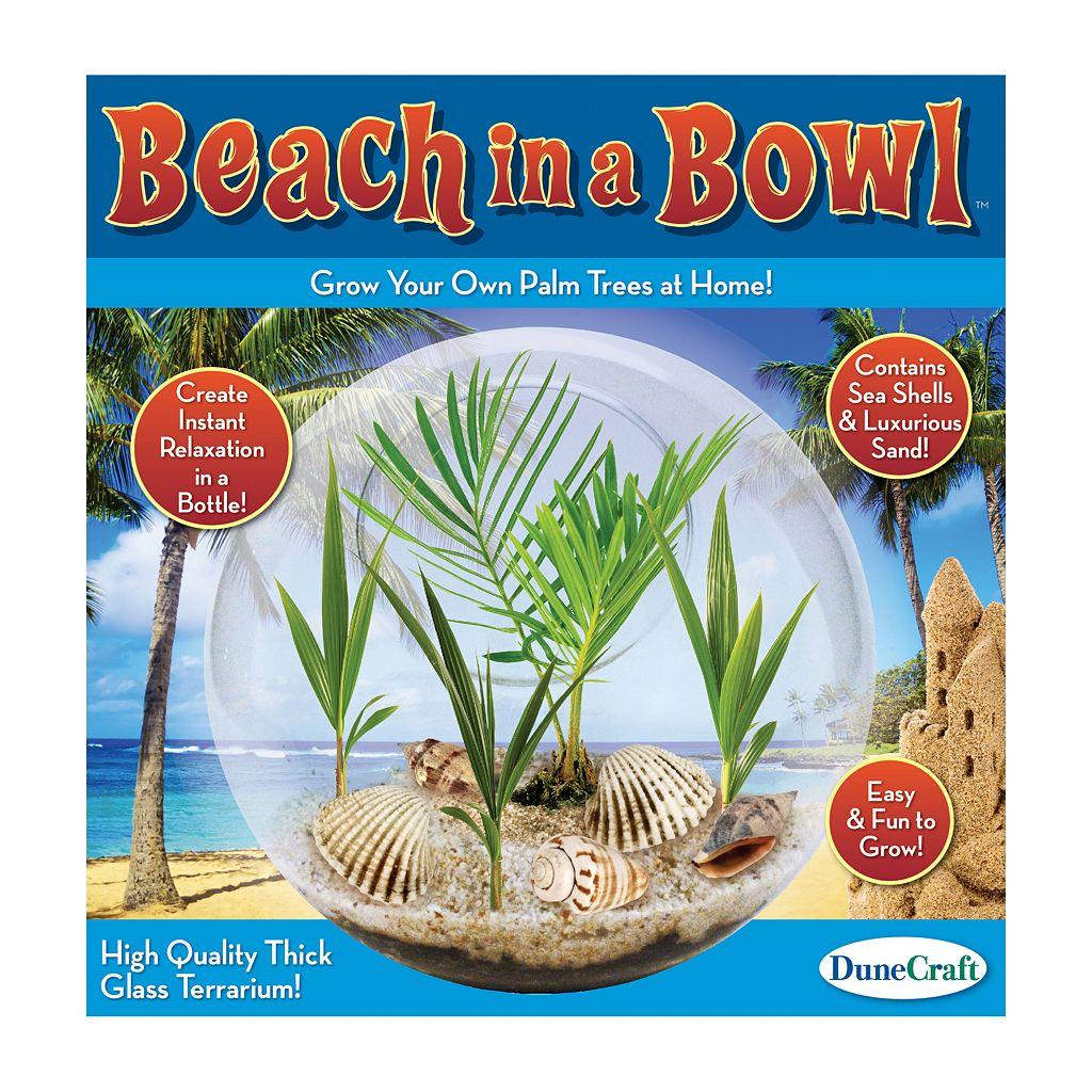 Dunecraft Beach in a Bowl Glass Terrarium