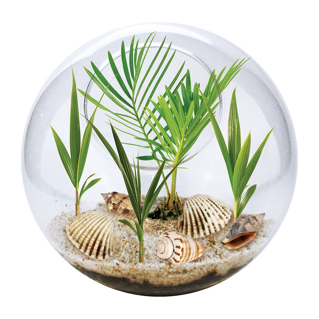 DuneCraft Beach in a Bowl Glass Terrarium