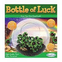 Dunecraft Bottle of Luck Glass Terrarium