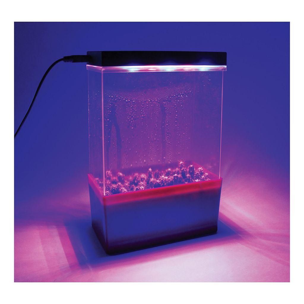 Dunecraft Cactus Garden LED Light Cube Terrarium