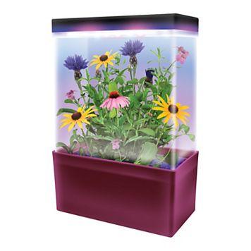 DuneCraft Mini-Meadow LED Light Cube Terrarium