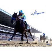 Steiner Sports Victor Espinoza Signed American Pharoah Leads The Pack 2015 Belmont 8' x 10' Photo