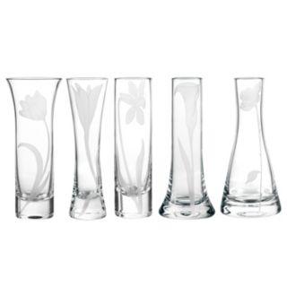 Qualia Glass Bouquet 5-pc. Bud Vase Set