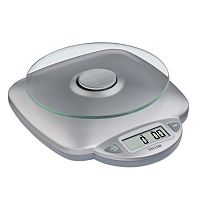 Taylor 3842 Digital Food Scale