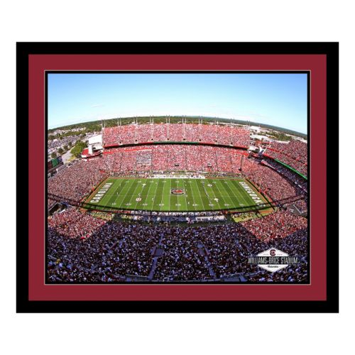 South Carolina Gamecocks Stadium Framed Wall Art