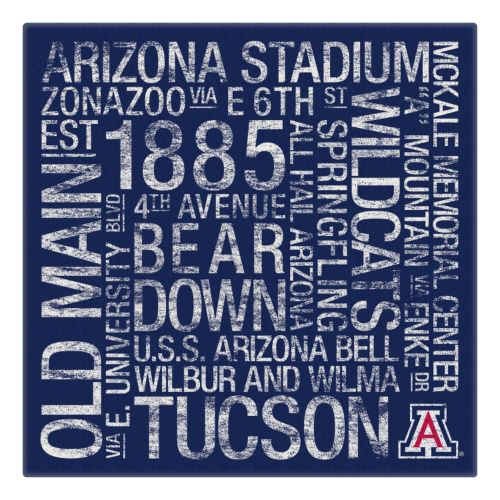 Arizona Wildcats Subway Canvas Wall Art