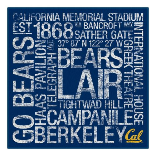 Cal Golden Bears Subway Canvas Wall Art