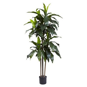 nearly natural 5-Foot UV Resistant Artificial Dracaena Plant