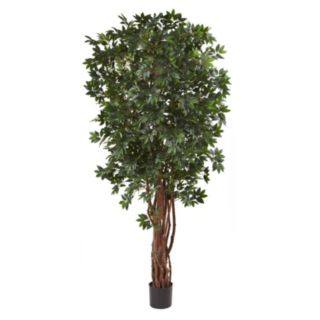 nearly natural Lychee Silk Tree