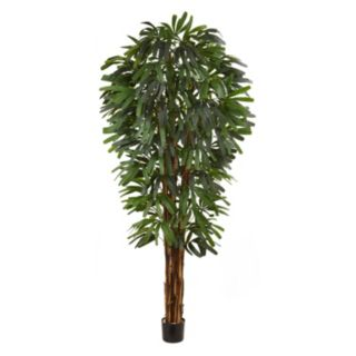 nearly natural Raphis Silk Palm Tree