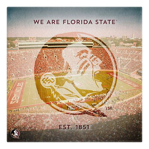 Florida State Seminoles Stadium Canvas Wall Art