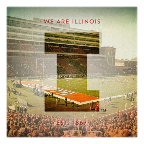 Illinois Fighting Illini Stadium Canvas Wall Art