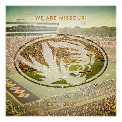 Missouri Tigers Square Stadium Canvas Wall Art