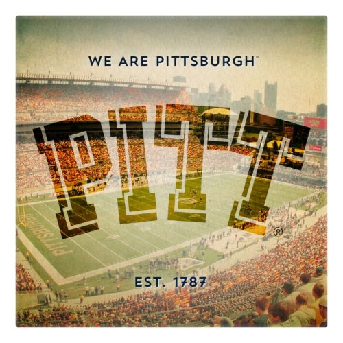 Pitt Panthers Stadium Canvas Wall Art