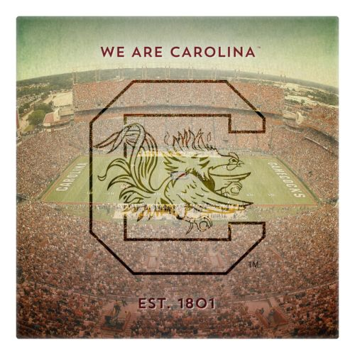 South Carolina Gamecocks Stadium Canvas Wall Art