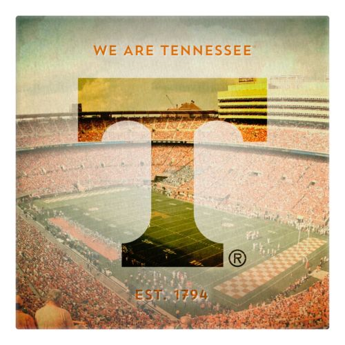 Tennessee Volunteers Stadium Canvas Wall Art