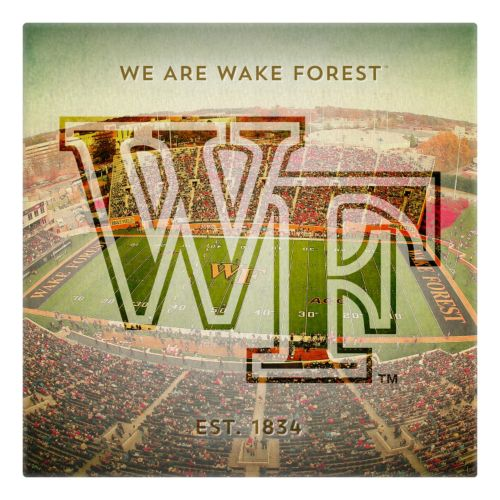 Wake Forest Demon Deacons Stadium Canvas Wall Art