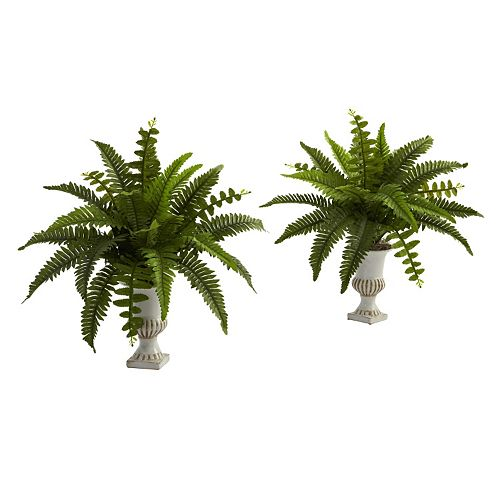 nearly natural Artificial Boston Fern 2-piece Set