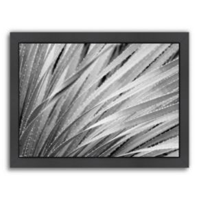 Americanflat ''Agave Abstract 3'' Framed Wall Art
