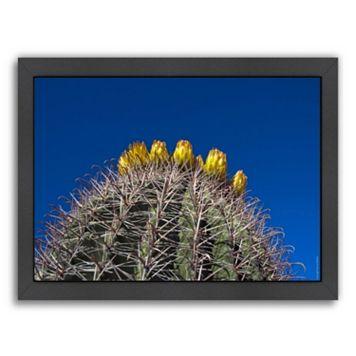 Americanflat ''Barrel Cactus'' Framed Wall Art