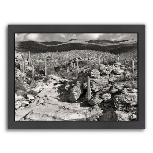 Americanflat ''Morning Desert Vista'' Framed Wall Art