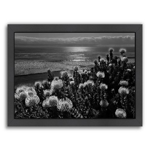 Americanflat ''Protea and Pacific'' Framed Wall Art